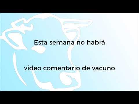 Comentario Vacuno - 02/08/2021