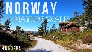 AGDER NORWAY | Norwegian Nature Walk | Virtual Treadmill Hike in Fell Nature 🇳🇴