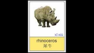 Mandarin Chinese Flashcards - Animals - Mammals II 普通话闪卡- 哺乳动物 II