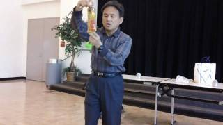 Japanese Magic Show
