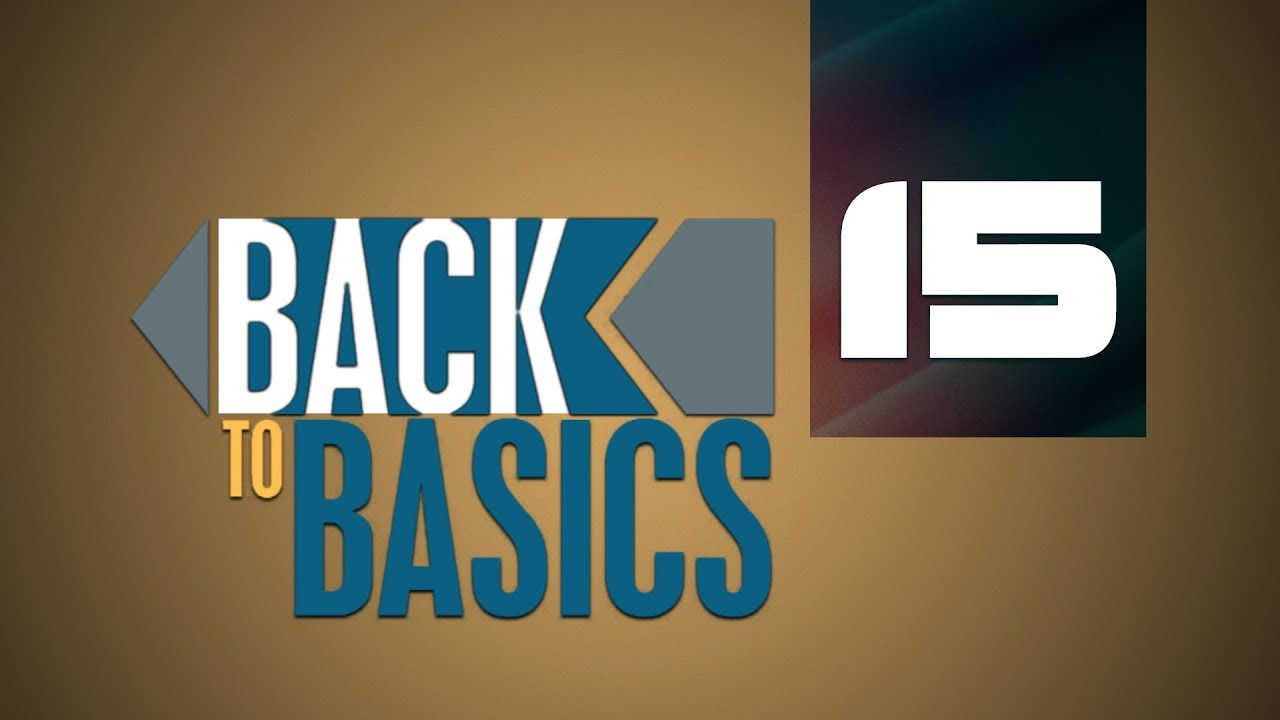 Back to Basics | Building Our Worldview Part 1