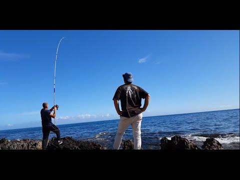 La pesca su un serbatoio knyazhegubsky di video