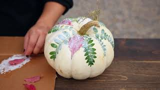 Botanical Pumpkin DIY Proven Winners