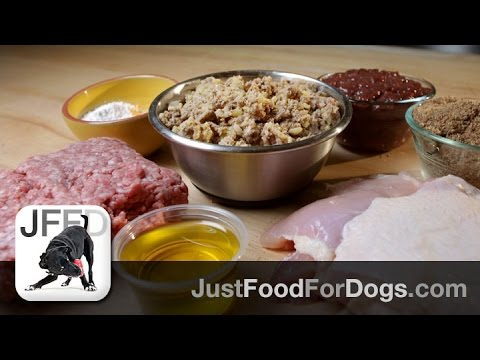 Video Support Diets For Dogs: Kidney & Liver Support | JustFoodForDogs