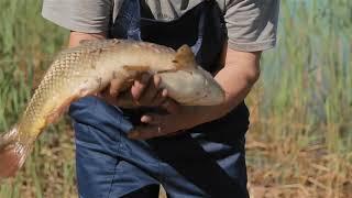 Элитная рыбалка в беларуси