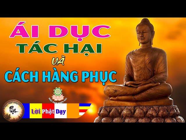 Lời Phật Dạy Về Ái Dục – Tác Hại và Cách Hàng Phục rất hay – Phật Pháp Nhiệm Màu
