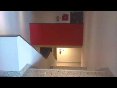 Video Youtube TRINITY COLLEGE SAN SEBASTIAN DE LOS REYES