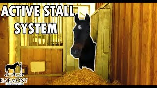 Active Horse Stall System In Germany To Keep Horses Healthy