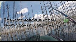 Где и что ловится на озерах челябинской области