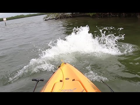 SCARY Explosion Under My Kayak! Then Big Snook and Redfish!