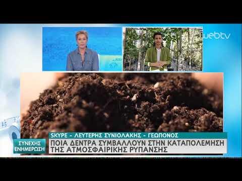 Συνιολάκης: «Βελανιδιά και ελιά τα πιο… δροσερά φυτά» | 18/05/2020 | ΕΡΤ