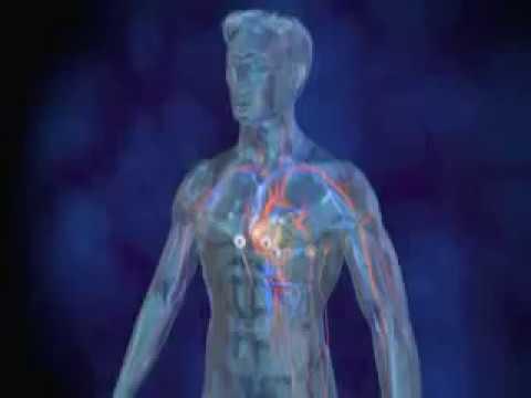 Lhypertension secondaire, linsuffisance rénale
