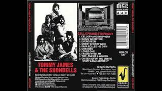 Tommy James & The Shondells CHANGES Cellophane Symphony 1969