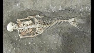"Dead Mermaid ""Sirena"" (Animal Planet, Special Analysis 100% TRUE) Real on Tropical Island 2015"