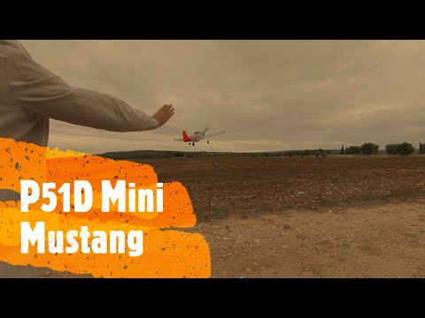 Il tuo primo warbird: Eachine Mini Mustang P-51D - Review - Test - Recension