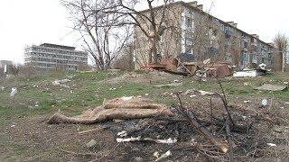 Субботники в Волгограде не очистили город от мусорных свалок в жилых кварталах
