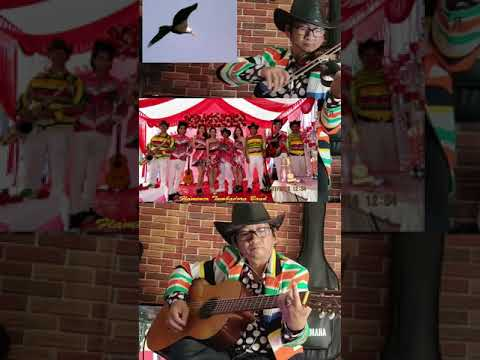 Tumbadora Band Relax By Thanh Tung Violon At The End Of Saigon Social Distance Day Eagle ABBA