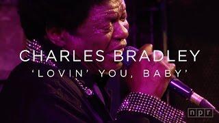 Charles Bradley: 'Lovin' You, Baby' SXSW 2016 | NPR MUSIC FRONT ROW