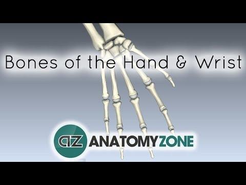 Nackenschmerzen Hände