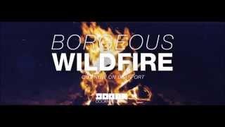 Borgeous-Wildfire