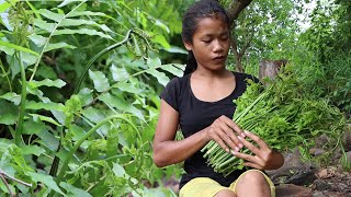 The Delicious Food From The Green Plants ( Elephant Nose Plants ) Have You Know And Eat This Plant?