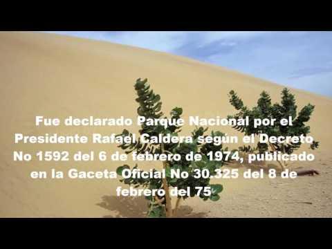 Sombra en los Médanos: Canta Simón Díaz - Johnny Díaz Apitz