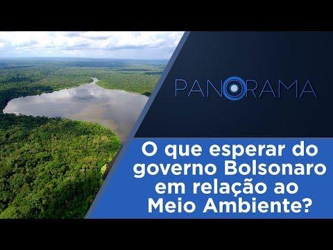 Brasil 2019: Meio Ambiente