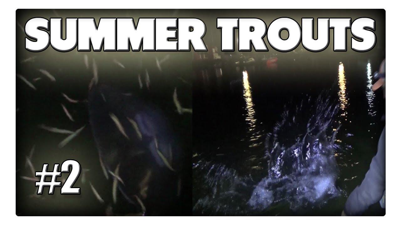 Meerforellen im Sommer - Nachtangeln im Reich der Opalwürmer