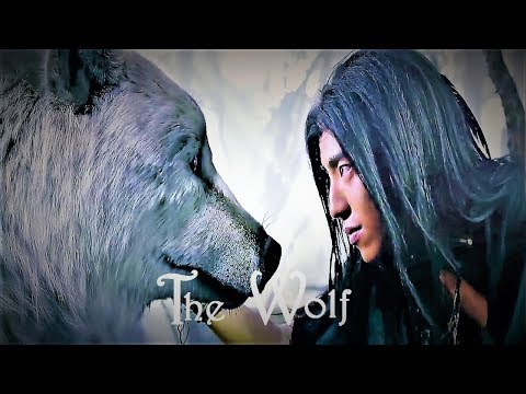 [OFFICIAL] The Wolf  狼殿下    The Majesty Of Wolf    Upcoming Drama Chinese     Darren Wang & Li Qin