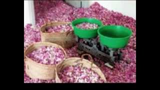 تحميل اغاني حسين الجسمي - روز كازان غياهيب (النسخة الأصلية)   قناة نجوم MP3