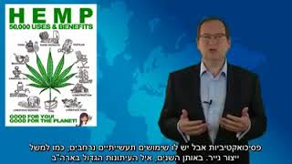 Gilad Alper: The Truth About Cannabis