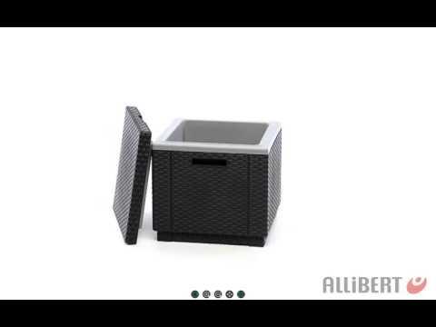 allibert ice cube mit integrierter k hlbox 218759 g nstig kaufen. Black Bedroom Furniture Sets. Home Design Ideas