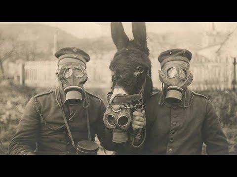38 поразительных исторических фото