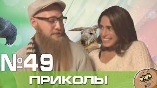 Лучшие вайны и приколы Декабрь 2016 Выпуск 49