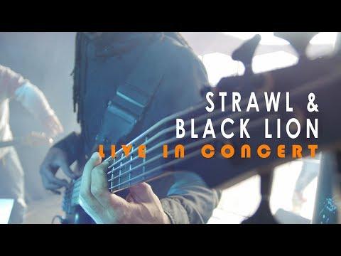 Strawl & Black Lion - Jah Team [Wildeburg festival 2017]...
