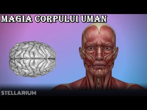 Papillomavirus et mal de gorge