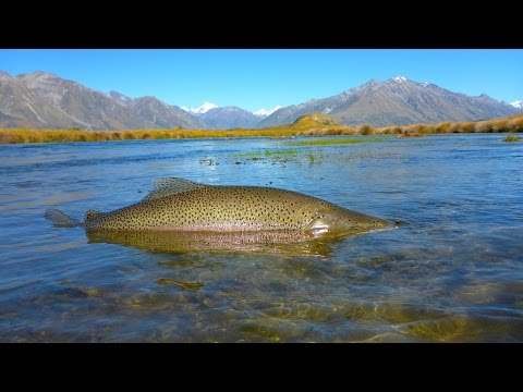 South Island Fly Fishing 2017