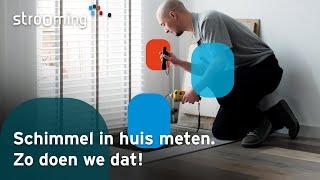 Videoproductie Schimmel in huis meten: zo doen we dat!