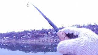 Рыбалка на оке в ноябре хищник