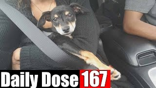 #DailyDose Ep.167 - MEET LYNDA! | #G1GB