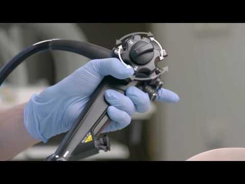 Giardia isang bata sa isang test ng dugo
