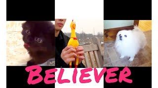 Животные поют Imagine Dragons- Believer -САМЫЙ НЕОБЫЧНЫЙ КАВЕР!!!!!!