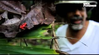 Diario de viaje - Panamá, Boca del Toro y San Blas