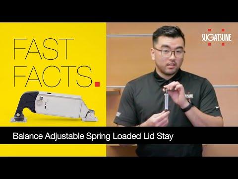 Sugatsune Balance Adjustable Spring Loaded Lid Stay