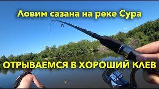 Рыбалка в лунино на суре