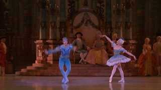 Bluebird pas de deux - Valentine Colasante& Francois Alu