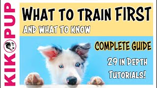 COMPLETE GUIDE to PUPPY TRAINING - What to train FIRST