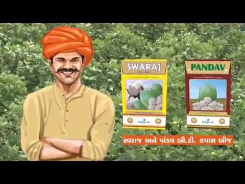 Swaraj Cotton Seeds