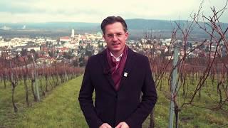 Vorzugsstimme Stefan Schmuckenschlager