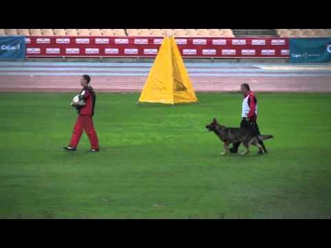 Preview video  Vello vom Patscherkofel wm 2010
